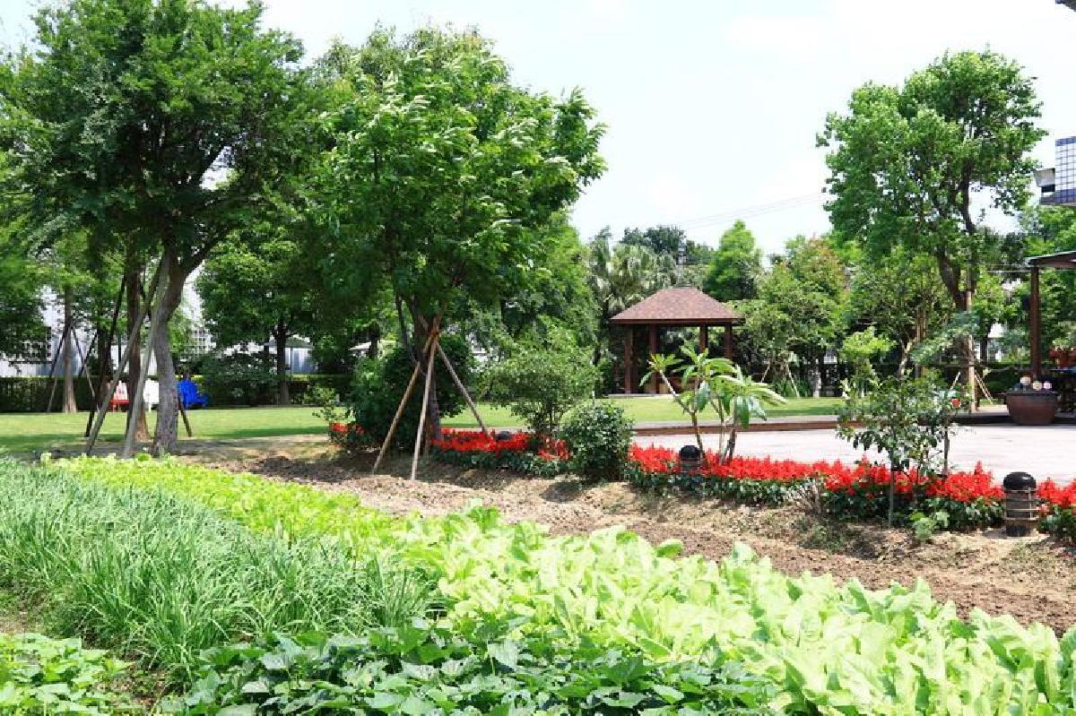 專屬生態的保育園區1